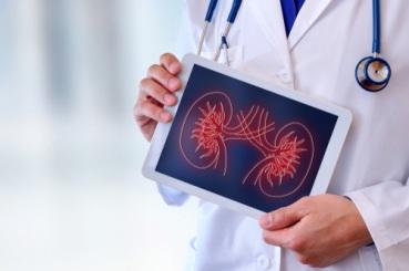 Artificial Kidney Transplant ARENTEIRO