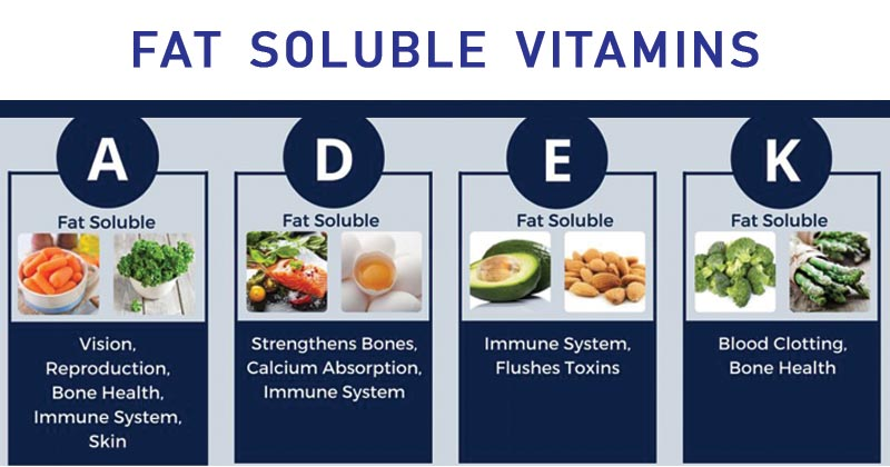 arenteiro・ Fat soluble vitamins