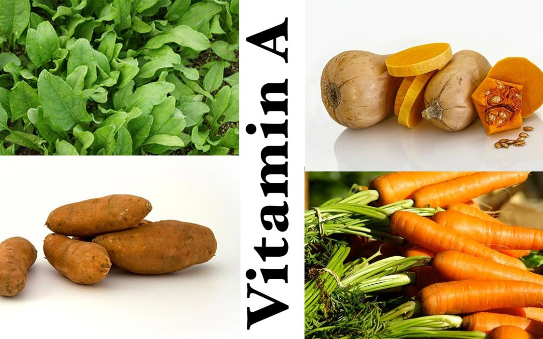 Vitamin A Retinol Function in the Body