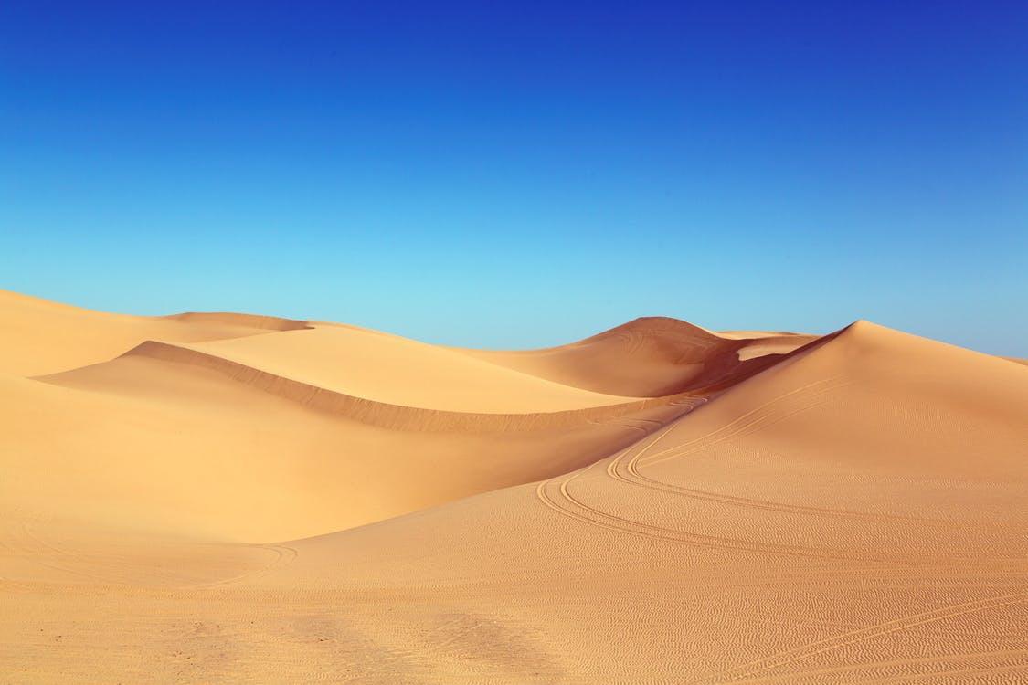 Landscape Facts: 9 World's Top Largest Deserts
