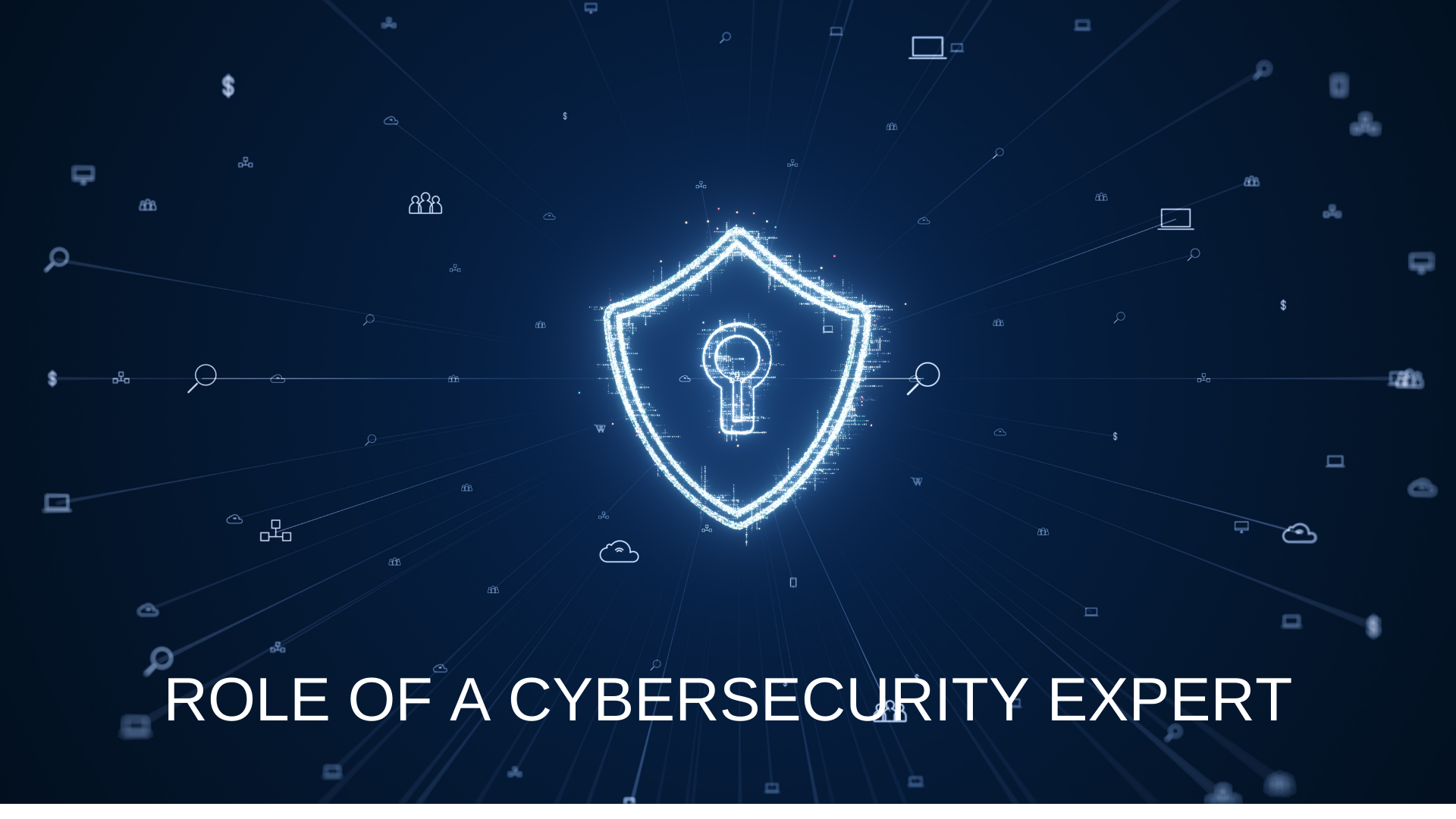 role of a cybersecurity expert