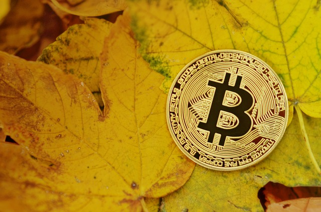 Custodian For Bitcoin IRA And Other Self-Directed IRAs