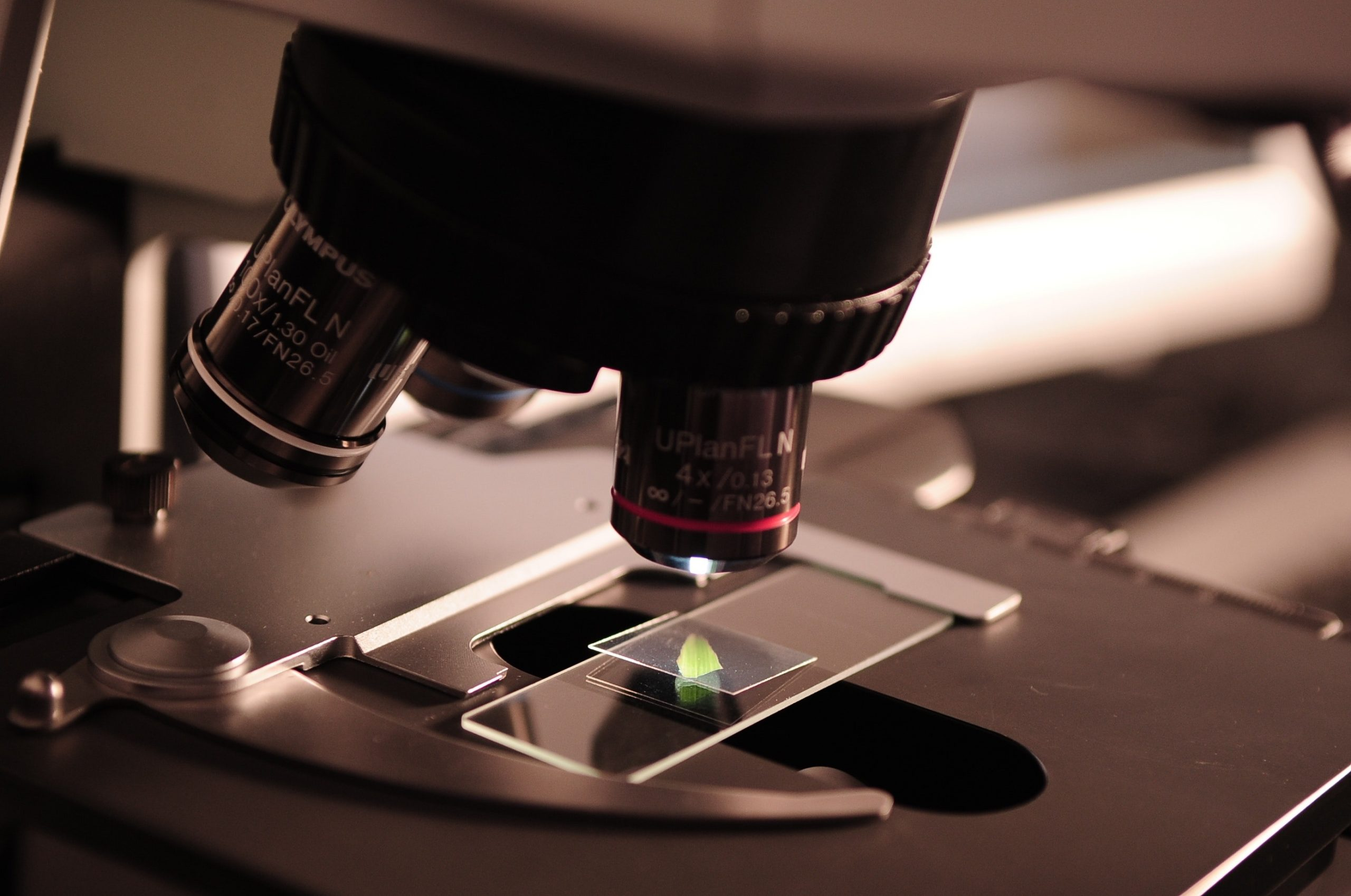 Top 7 Things You Should Consider Before Visiting a Pathology Lab in Bangalore