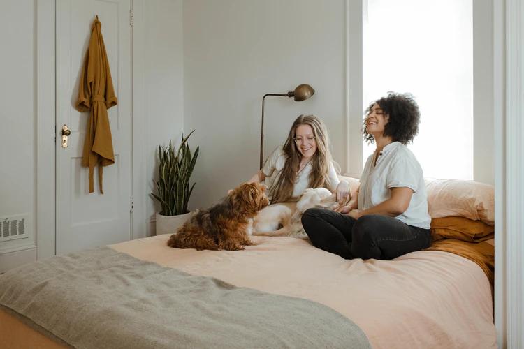 How To Make Your Dog Feel Cozy in Your Home - Arenteiro.com